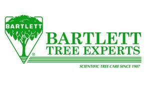 BTE_LOGO_GREEN_600[1]